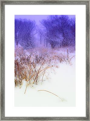 Feel Of Cold Land Framed Print