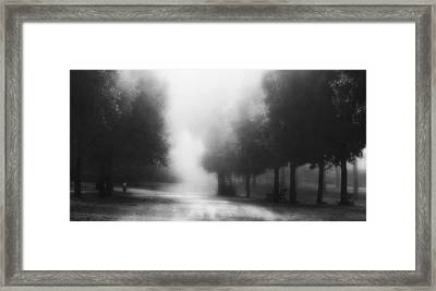 Feel Secure Framed Print by Fulvio Pellegrini