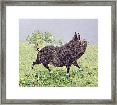 Feeling Great  Framed Print by Pat Scott