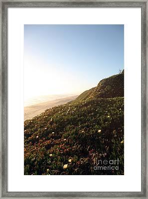 Feels Like Home Framed Print by Amanda Barcon