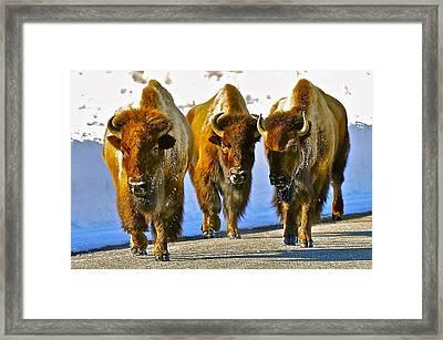 Feet Don't Fail Me Now #2 Framed Print