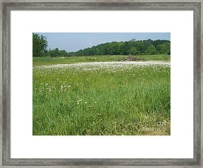 Feild Of White Framed Print by Sacred  Muse