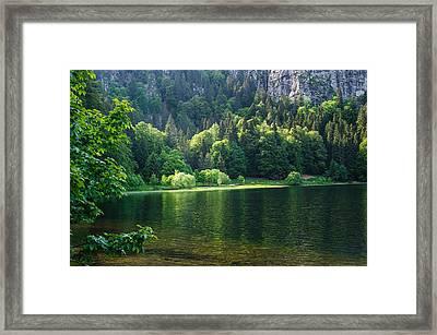 Feldsee Framed Print