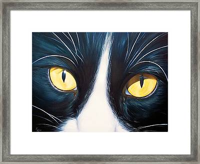 Feline Face 2 Framed Print