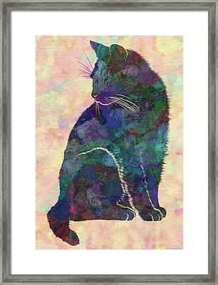 Feline Framed Print by Jack Zulli