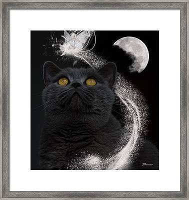 Feline Magic Framed Print by Surreal Photomanipulation
