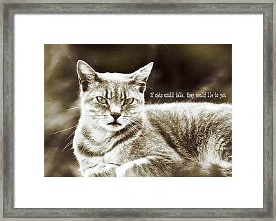 Feline Moment Quote Framed Print by JAMART Photography