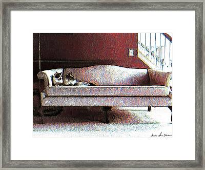Framed Print featuring the photograph Felines Be Like... by Iowan Stone-Flowers