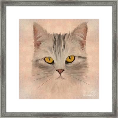 Felis Catus Framed Print