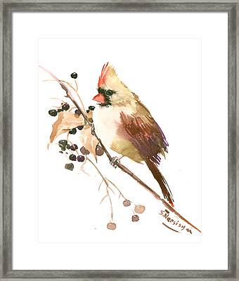 Female Cardinal Bird Framed Print