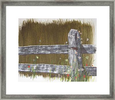 Fence D And S Framed Print