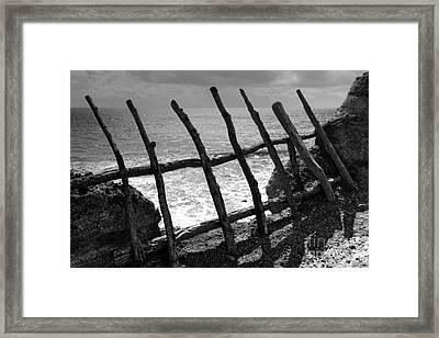 Fence Framed Print by Gaspar Avila