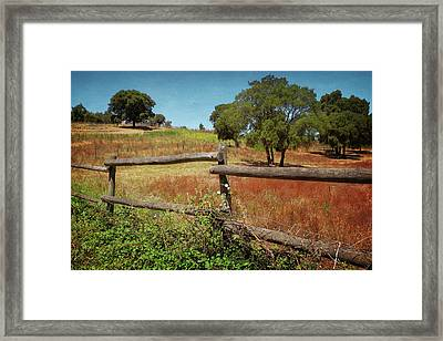 Fence In Countryside Framed Print