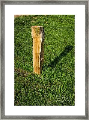 Fence Post Framed Print by Jon Burch Photography
