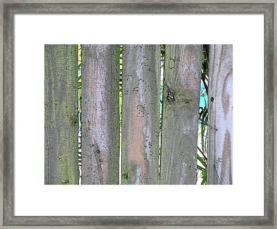 Fence South Framed Print