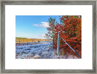 Framed Print featuring the photograph Fenced Autumn by Dmytro Korol