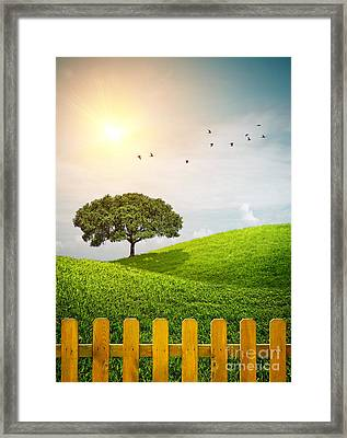 Fenced Grass Hills II Framed Print by Carlos Caetano