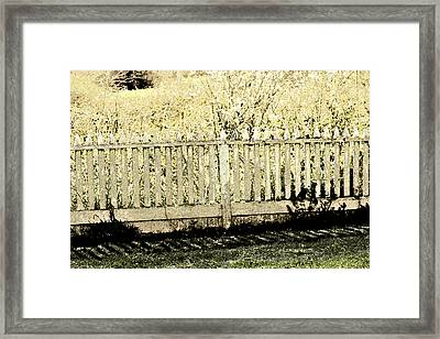 Fenced In Framed Print by Bonnie Bruno