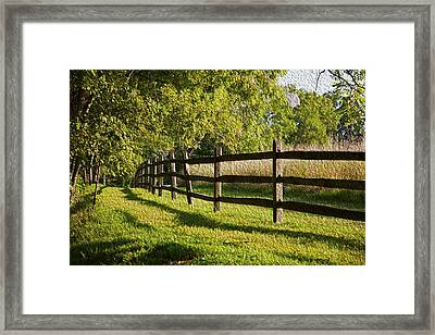 Fenced In Framed Print