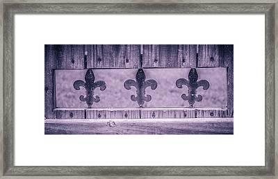 Fenced In Framed Print by Stefanie Silva