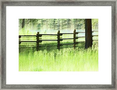 Fenced Out Framed Print