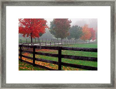 Fenceline And Wet Road, Autumn Color Framed Print by Panoramic Images