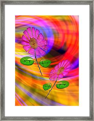 Feng Shui Fortune Framed Print