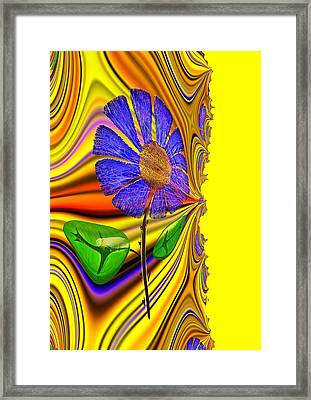 Feng Shui Wealth Framed Print