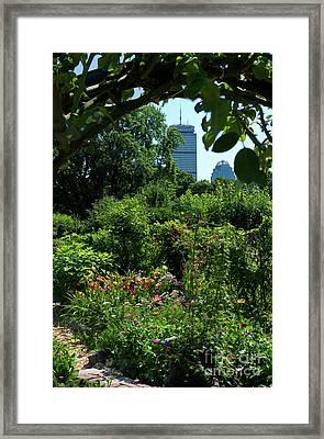 Fenway Victory Gardens In Boston Massachusetts  -30951-30952 Framed Print