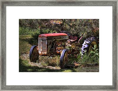 Ferguson Tractor Framed Print by David Patterson