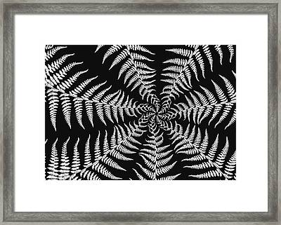 Fern Abstract Framed Print by Edward Myers