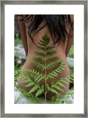 Fern And Woman Framed Print