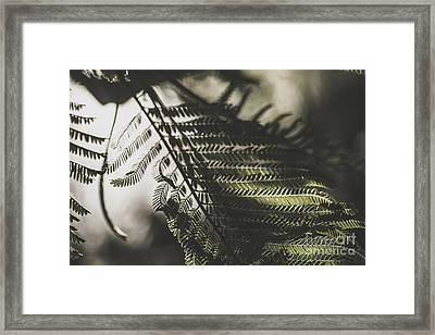 Fern Dusk Framed Print