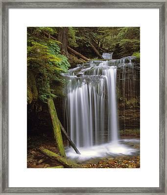 Fern Falls Framed Print by Leland D Howard