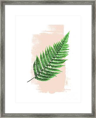 Fern Leaf On Pink Framed Print