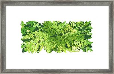 Fern Vignette Framed Print by JQ Licensing