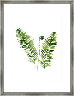 Fern Watercolor Painting Framed Print