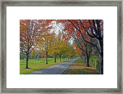 Ferndale Fall Colors Framed Print by Matthew Adair