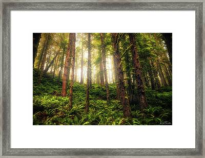 Framed Print featuring the photograph Ferngully by Rick Furmanek