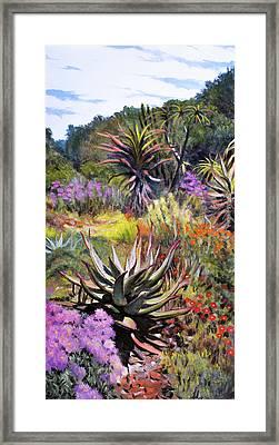 Fernkloof Fynbos Framed Print
