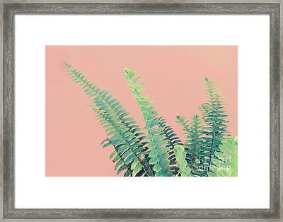 Ferns On Pink Framed Print