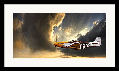 Fly Framed Prints