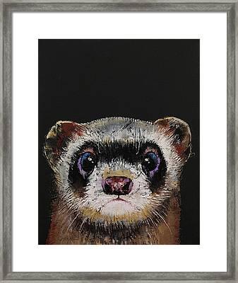 Ferret Framed Print