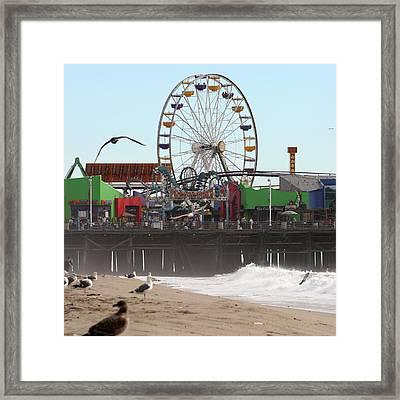 Ferris Wheel At Santa Monica Pier Framed Print
