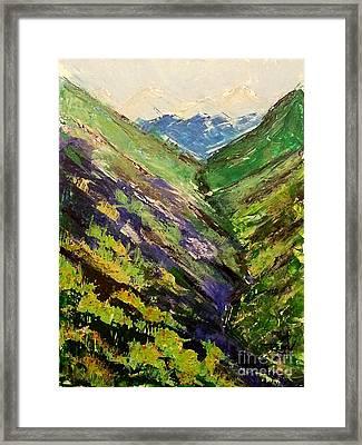 Fertile Valley Framed Print