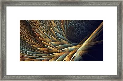 Festival Of Fractal Feathers Framed Print by Doug Morgan