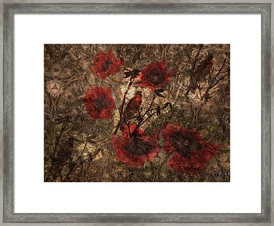Festival Of Life Framed Print
