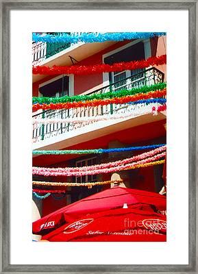 Festive Framed Print by Andrea Simon