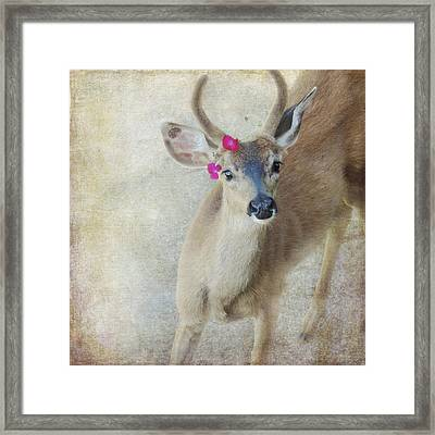 Framed Print featuring the photograph Festive Deer by Sally Banfill