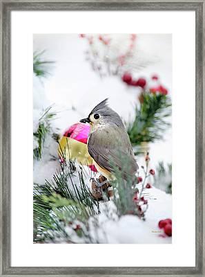 Festive Titmouse Bird Framed Print